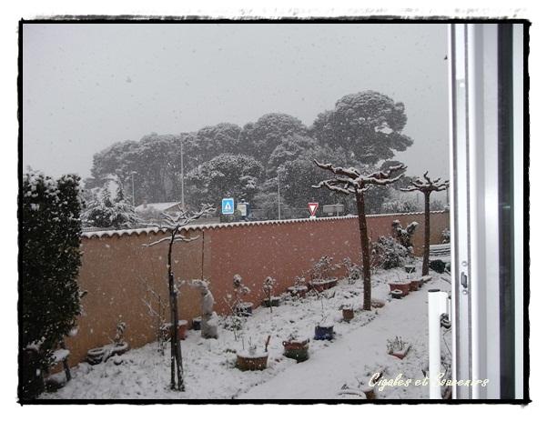 Tout est blanc de neige ........
