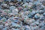 Challenge Zéro Plastic