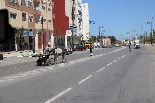 27 avril - Azrou - Moulay Idriss