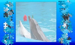 Jouer à Dolphin in love jigsaw puzzle