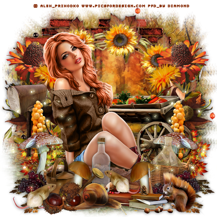 "Tutoriel ""Autumn 2017"" de Chrisje"