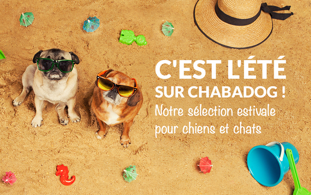 Concours Chabadog : 1 Set Isabelle Courteney à gagner (gamelle+tapis)
