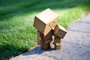 Picture-of-Danbo