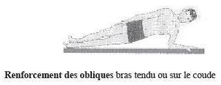 Obliques renforcés gainage latéral
