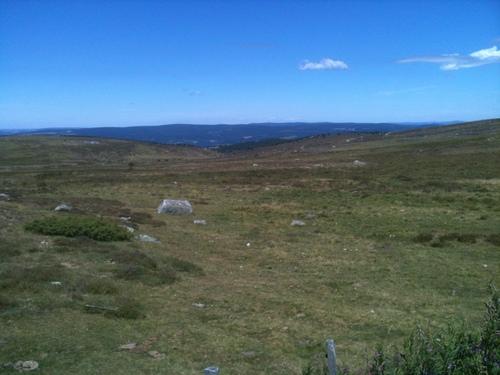 Au mont Lozère, les sources de l'Altier