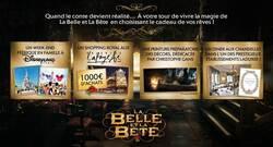 La Belle et la Bête - Découvrez un extrait et de nouvelles affiches réalisées par Laurent Lufroy ! 12 02 2014