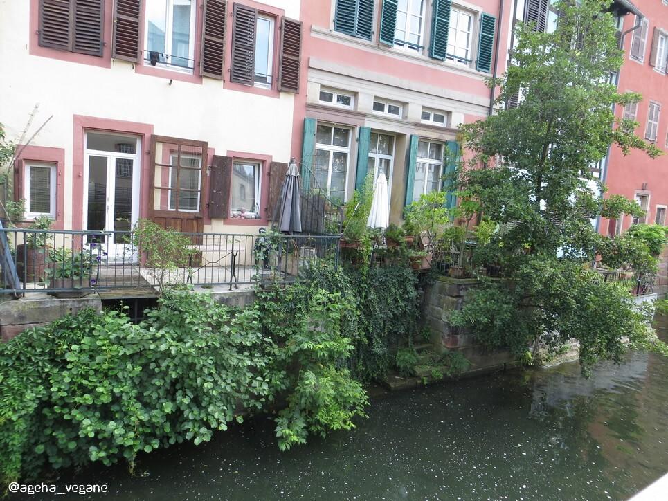 Strasbourg été 2017 - Quartier La Petite France