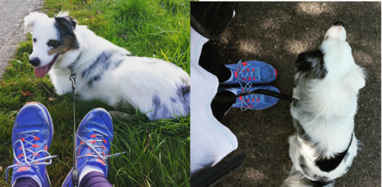 [sport] Mens sana in corpore sano ∞ Comment se mettre à la course à pied ?