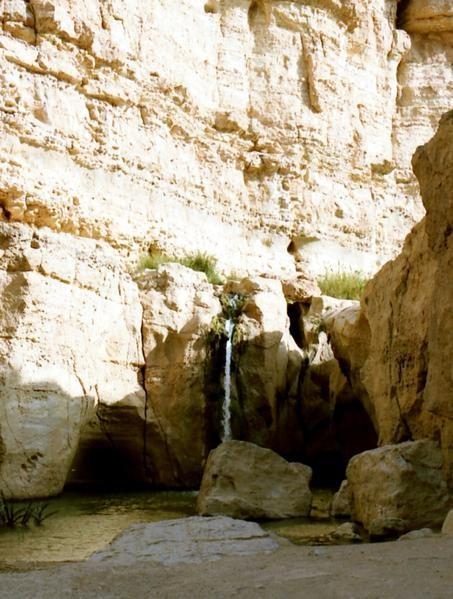 Grande cascade (Tamerza)