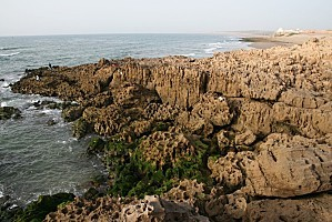 Maropc-2010 1555