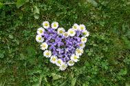 coeur-fleurs.jpg