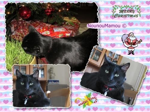 Le Noël de Frimousse