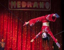sortie cirque