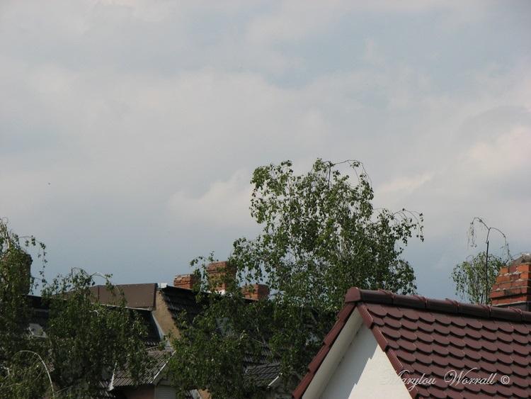 Ciel d'Alsace 365