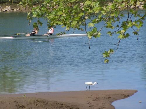 Visite de la Plaine d'Ansot à Bayonne