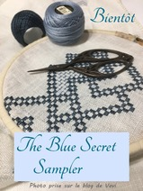 Sal Blue secret sampler 2018