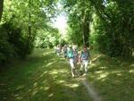 La randonnée du 24 juin à Bissières