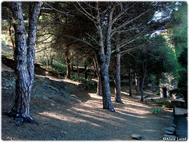 Collioure09_72