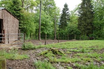 Parc animalier Bouillon 2013 enclos 246