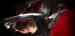 Ninja Gaiden 3 : Razor's Edge reporté à 2013