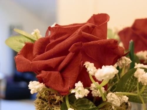 Rose de St Valentin