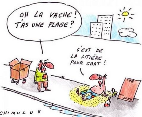 """Résultat de recherche d'images pour """"aout humour"""""""