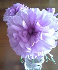 Petit bouquet printanier