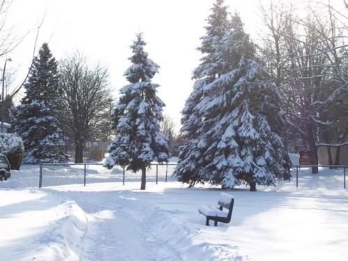 hiver4
