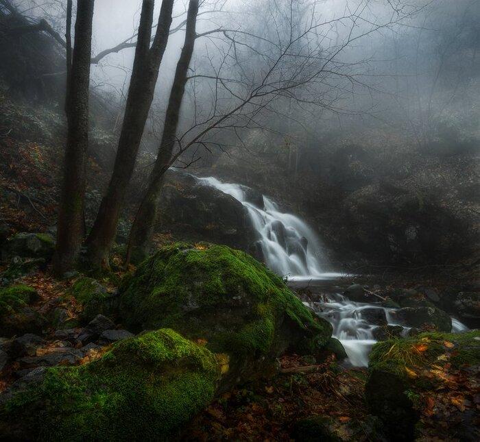 Landscape by Alexander Alexandrov