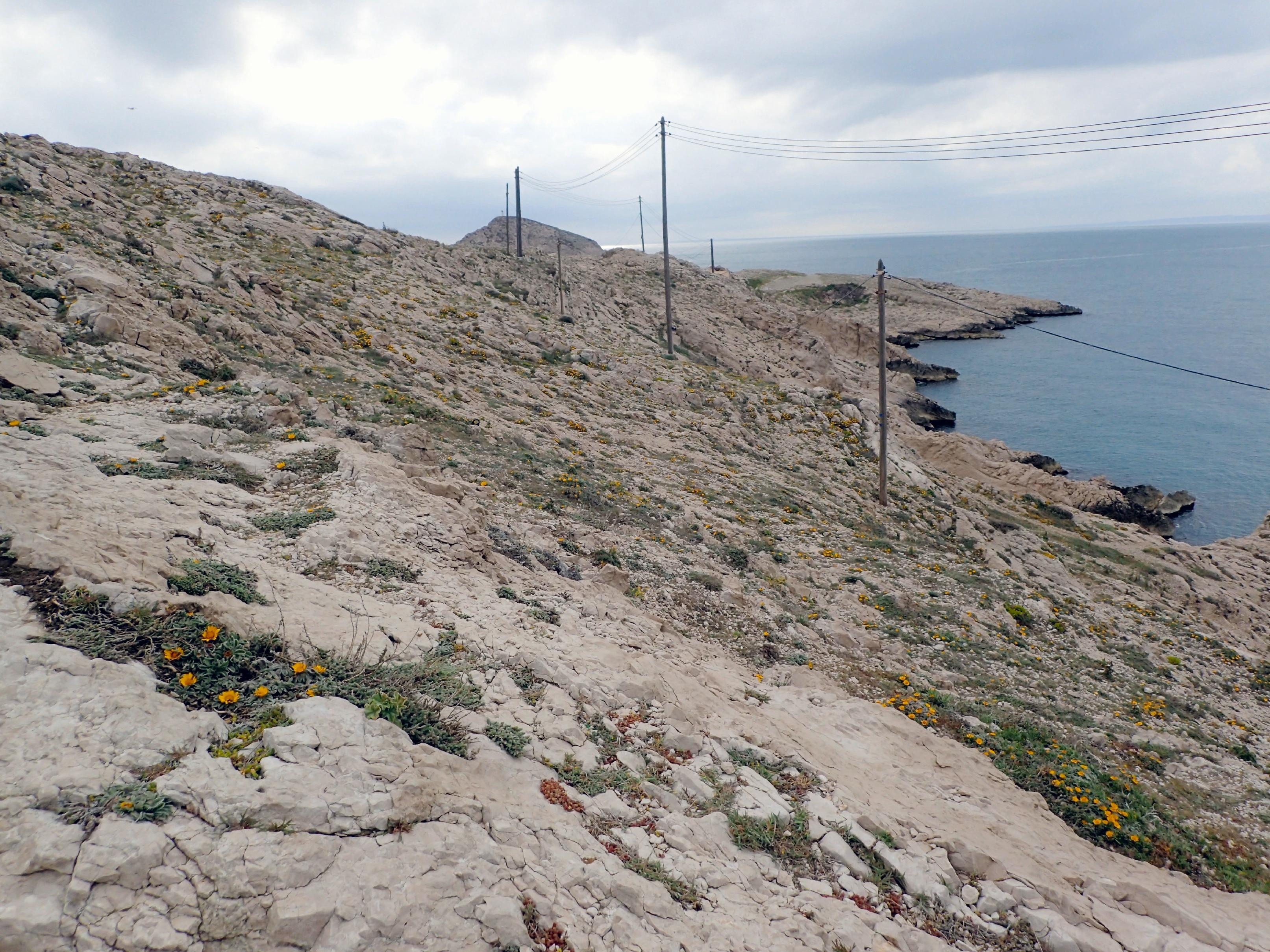 Cap Croisette Marseille