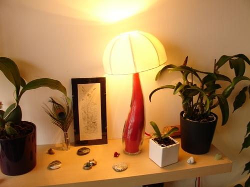 La Lampe Champignon