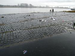 Sylvestermüll am Rheinufer