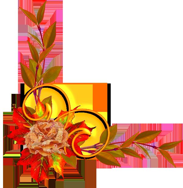 Nature, feuilles, fleurs, arbres ,Automne