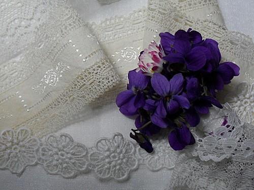 violettes--19-.JPG