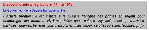 p.4> Deuxième partie > La Guyane dans la Première Guerre mondiale