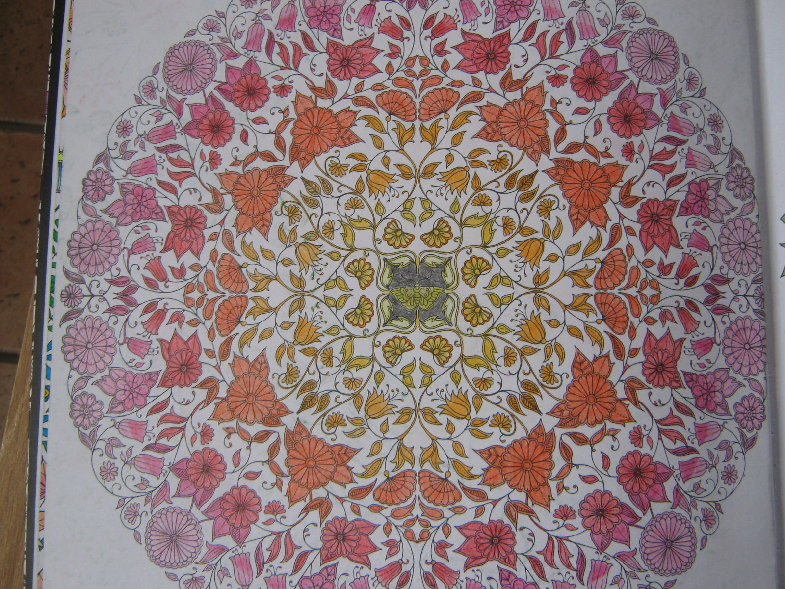 Coloriages Jardin Secret Phaenia gribouille