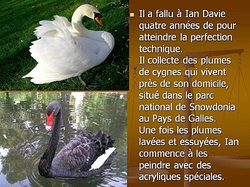 --iane Davie 2