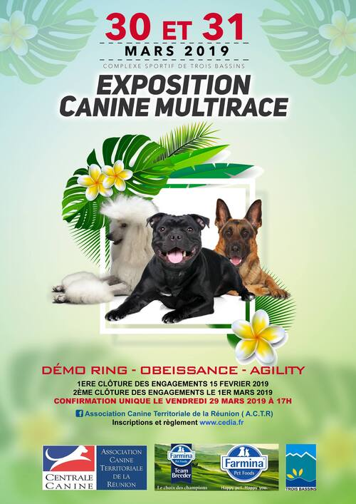 EXPOSITION CANINE MULTIRACE C.A.C.S 30 & 31 MARS 2019