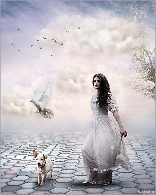 Paradis Blanc (Photomontage)