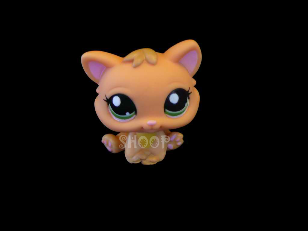 LPS 1691