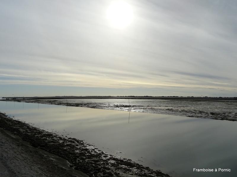 Entrée port Noirmoutier en l'ile