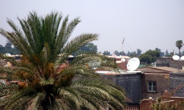 Palais El-Badi les terrasses