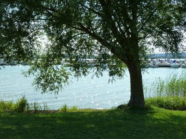 Lac de Madine 18 Marc de Metz 2011