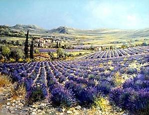 paysage drome provencale