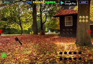 Jouer à City forest fun escape
