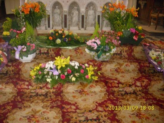 Fleurissement abonddant (1)