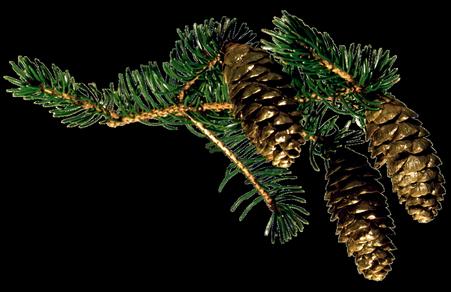 Tubes branches sapin de Noël 2