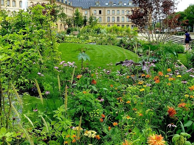 Metz un jardin en chantier 40 Marc de Metz 31 07 2012