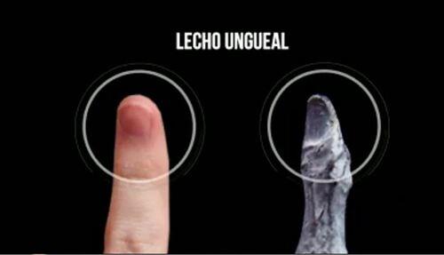 Les momies du Pérou/1