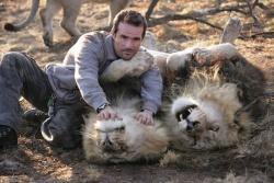 KEVIN RICHARDSON ET LES LIONS